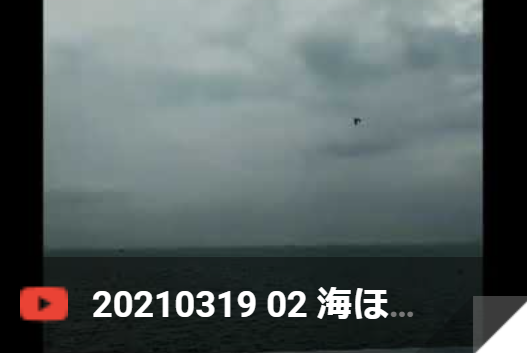 3月19日 海ほたる