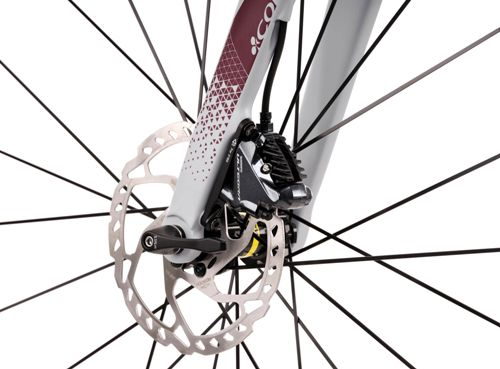 Colnago-EGRV-Disc-Gravel-E-Bike-2020-Electric-Road-Bikes-Grey-Red-2020-EGRVULM58SEGBG-4.jpg