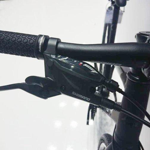 bike-king_21mrd-amy3_7.jpg