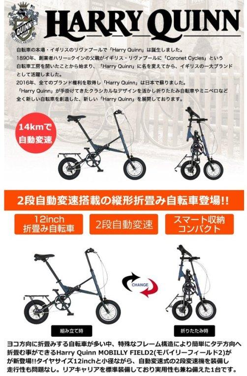 ibf-shop_88216_1.jpg