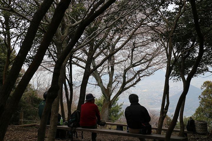 天涯桜を眺める人たち 2 3 26