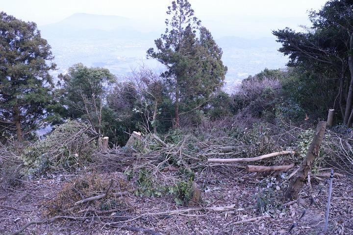 木を伐って整備  2 3 26