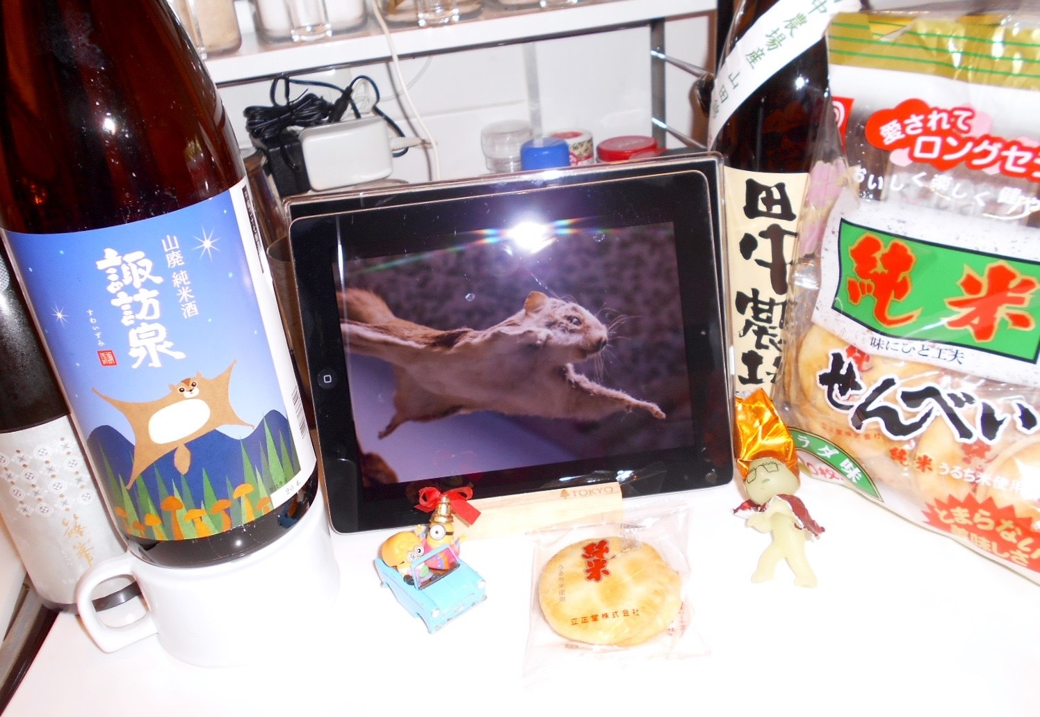 suwaizumi_yamahai27_momonga1.jpg
