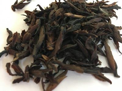 野生紅茶2020