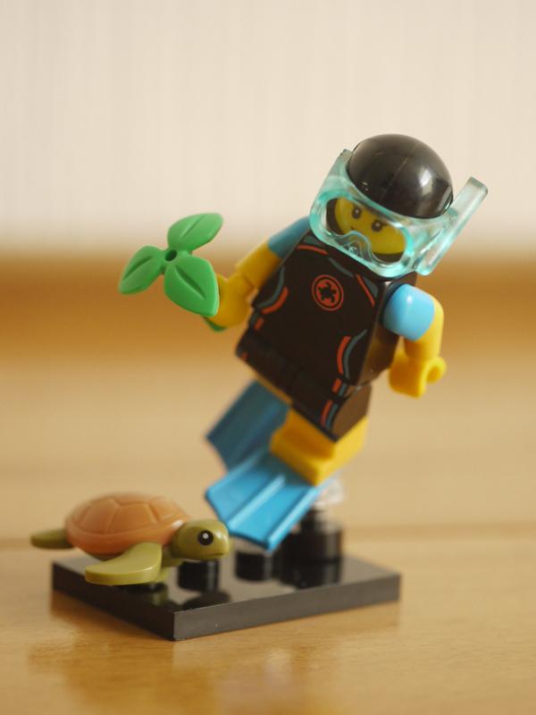 LEGOMinifig20-08.jpg