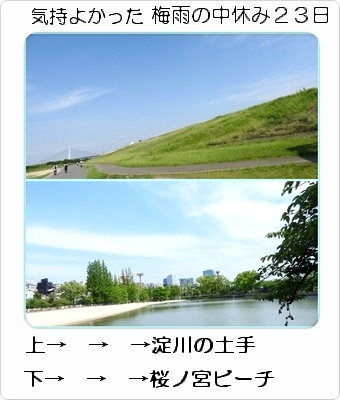 1土手桜ノ宮ビ-チ