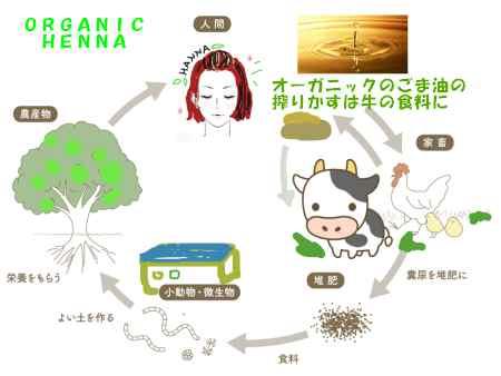 organic farm recycle henna farm