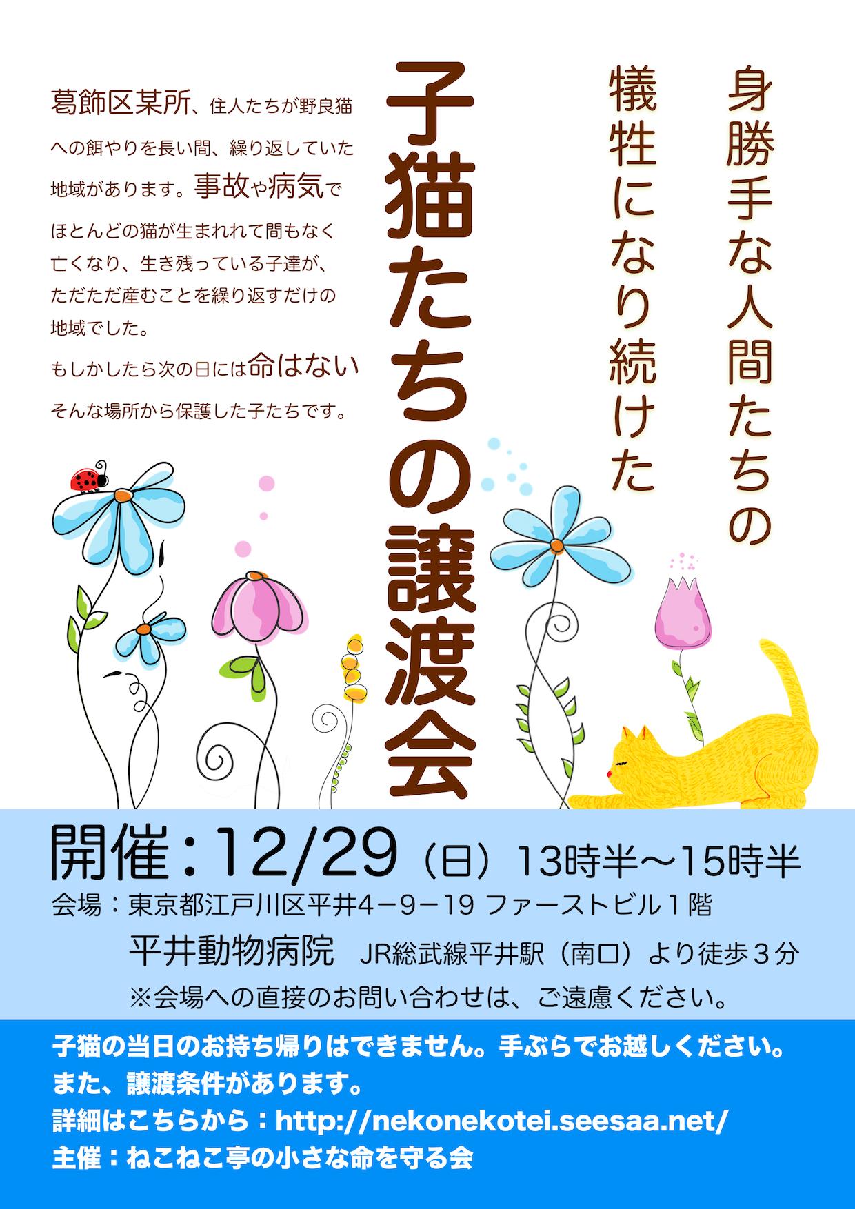 12/29開催:子猫たちの譲渡会:結果報告