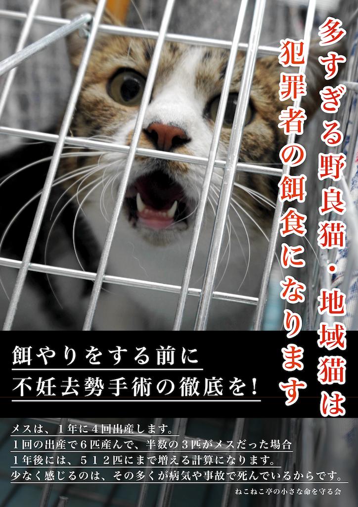野良猫・地域猫の猫の連れ去りが発生しました❗️猫獲り・猫拐い