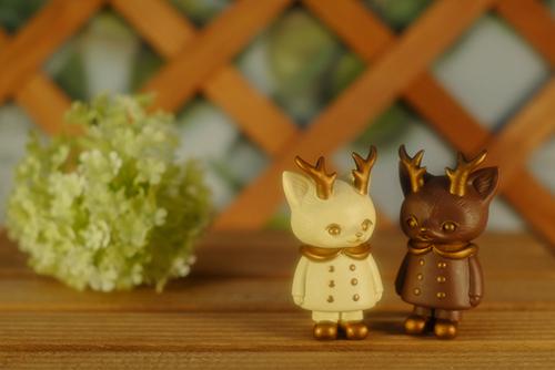 ツバキアキラが撮った、VAG・MORRIS、通称・つのねこ。ホワイトチョコレートとミルクチョコレートみたいで、おいしそうなつのねこ達。