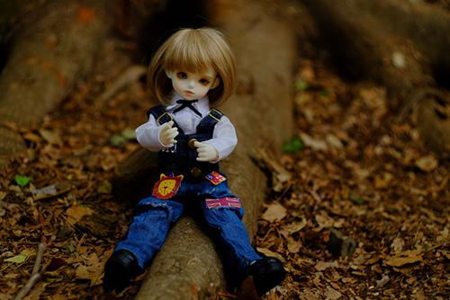 ROSEN LIED、Tuesday's child、通称・火曜子のチェルシー。木と戯れて遊んでいます。