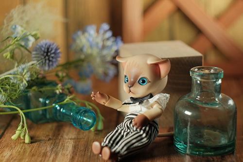 ツバキアキラが撮った、ISLAND DOLL・Luo LuoのRicky。青を基調とした雨色の小さなブーケは、Rickyの瞳の色。