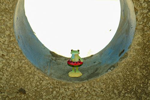 ツバキアキラが撮ったカエルのコポー。トンネルの向こうに海を見つけて、はしゃいだのも束の間、泳ぐ前にアイスキャンディーを食べているコポタロウ。