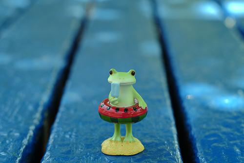 ツバキアキラが撮ったカエルのコポー。海の家でアイスキャンディーを食べながら、涼んでいるコポタロウ。