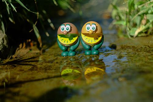 ツバキアキラが撮った、ゼスプリキウイブラザーズのフィギュア。水面に映る自分達の姿に酔いしれているキウイブラザーズ。