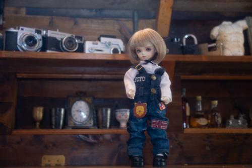ROSEN LIED、Tuesday's child、通称・火曜子のチェルシー。久しぶりのスタジオ撮影で、大きなお部屋を堪能しました。