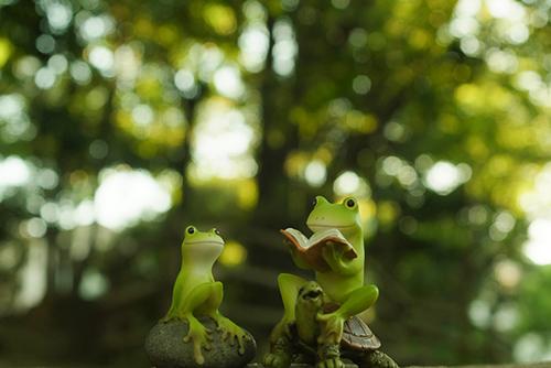ツバキアキラが撮ったカエルのフィギュア。木漏れ日さす森の中で、本を読んで貰っているカエルさん。