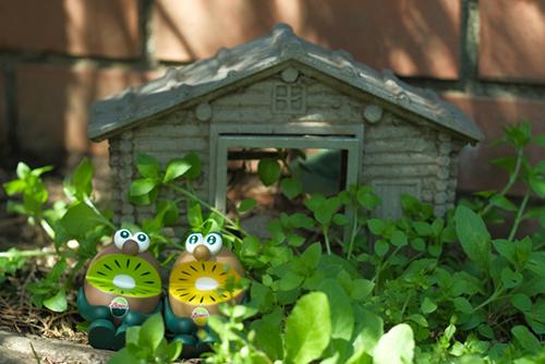 ツバキアキラが撮った、ゼスプリキウイブラザーズのフィギュア。道端で小さな家を見つけた、キウイブラザーズ。