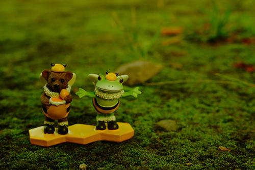 ツバキアキラが撮ったカエルのフィギュア、コポー。フワフワ・ポカポカの苔の上で、ハチミツをいっぱい食べたい、コポタロウとクマくん。