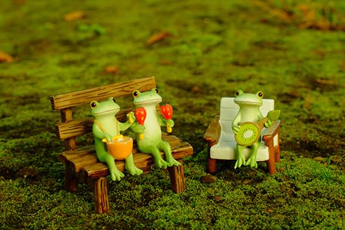 ツバキアキラが撮ったカエルのフィギュア、コポー。苔のじゅうたんの上で、日向ぼっこをしているフルーツバンド・コポタロウ達。