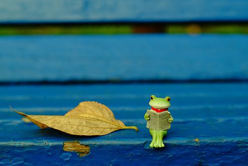 ツバキアキラが撮ったカエルのフィギュア、コポー。寒風の中で、新聞を読んでいるコポタロウ。