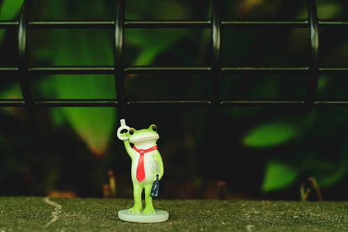 ツバキアキラが撮ったカエルのフィギュア、コポー。電車の網棚に座ってみたいコポタロウ。