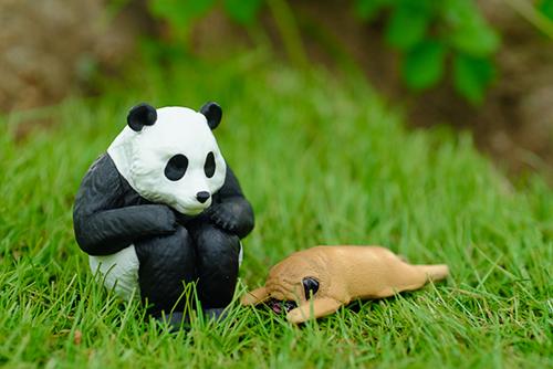 ツバキアキラが撮ったガチャガチャ、パンダの穴・ZooZooZoo・第2弾・つかれた寝のパグちゃんと、バンダイ・まちぼうけのパンダさん。