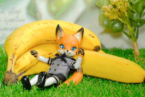 ツバキアキラが撮った、時兎-異夢-さんのKonちゃんが、バナナと戯れています。