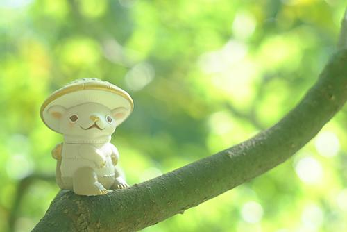ツバキアキラが撮った、VAG20・キノラ。木の枝で、ひと休みしているキノラ。