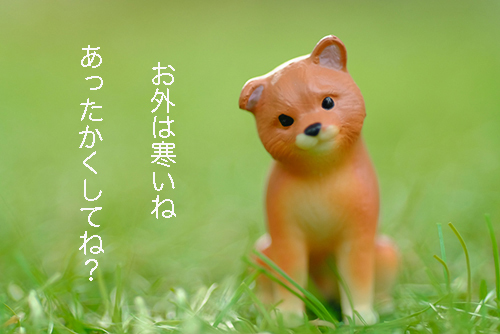 ツバキアキラが撮った、ガチャガチャ。エポック社・小首をかしげるどうぶつたち・2。寒い冬にいたわりの言葉をかけてくれる、柴犬。