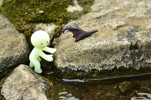 ツバキアキラが撮ったスミスキーの写真。岩の上から降りられなくて、困っているカワウソくんを助けに行こうとしているスミスキー。