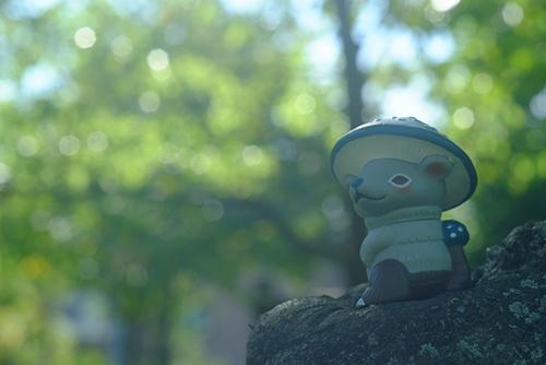ツバキアキラが撮った、VAG20・キノラ。森の中の岩の上で、思索にふけっている、キノラ。