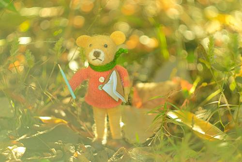 近所の雑貨屋さんで見つけた、羊毛フェルトのクマさんを連れて、近所の公園の草むらへ。