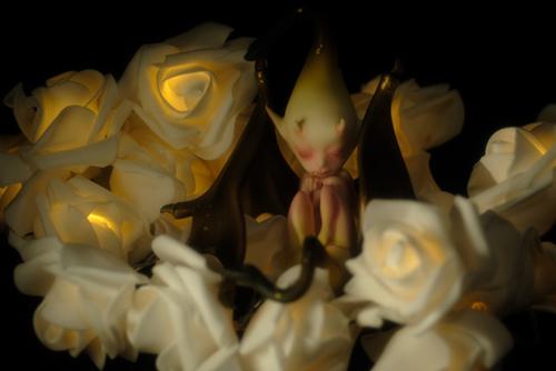 ツバキアキラが撮った、DOLLchateau・William AのRêve。薔薇の仄かな灯りの中で眠る、異形の子。