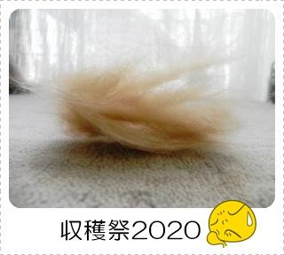 20200517-01