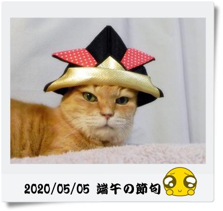 20200505-01