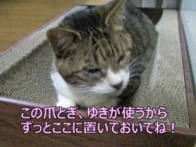 200516-05.jpg