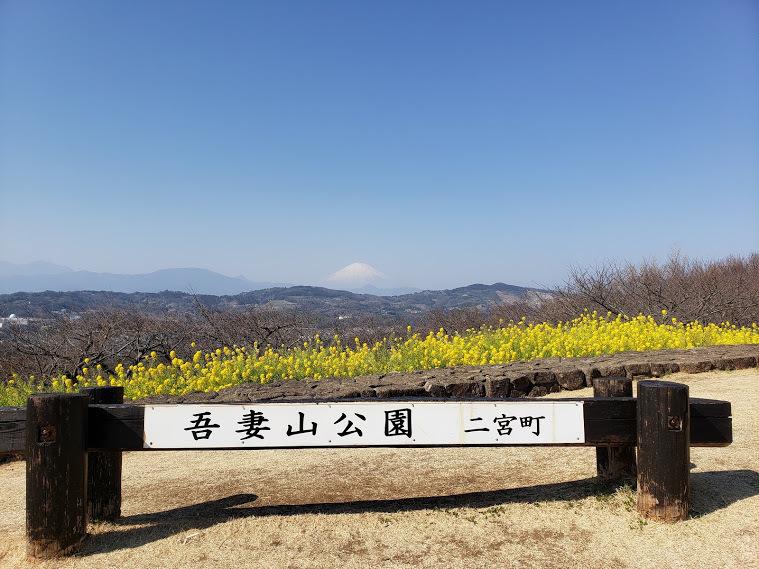 20210221_105653 富士山