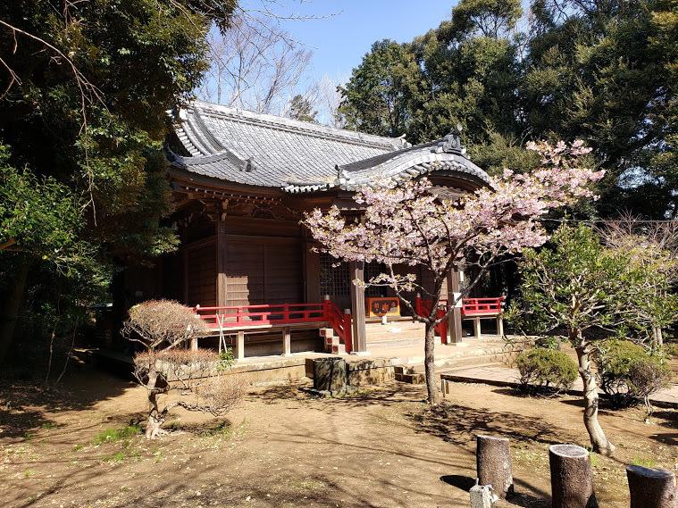 20210221_113939 吾妻神社