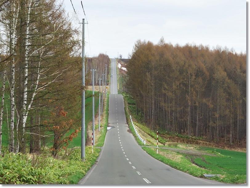 就実の丘へ続く道