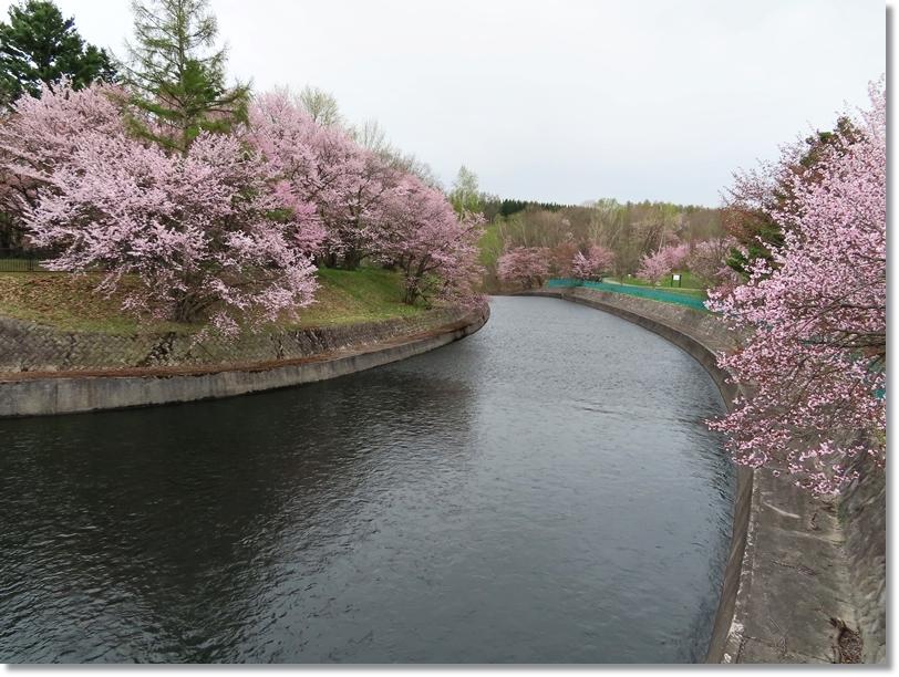 聖台ダム公園