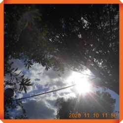 batch_DSCN0074.jpg