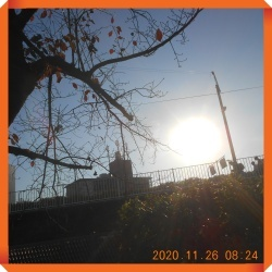 batch_DSCN0568.jpg