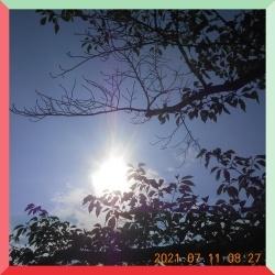 batch_DSCN0876.jpg