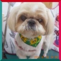 batch_DSCN4314.jpg