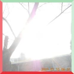 batch_DSCN4342.jpg