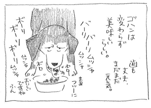 11-0406食欲普通