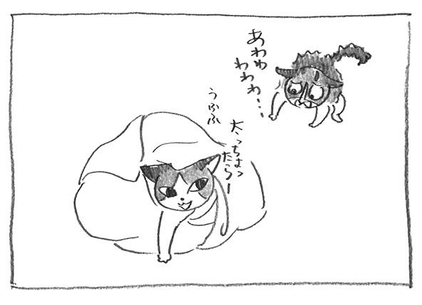 12-0413ケラケラ