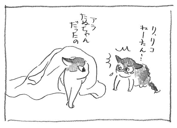 13-0413たぬちゃん