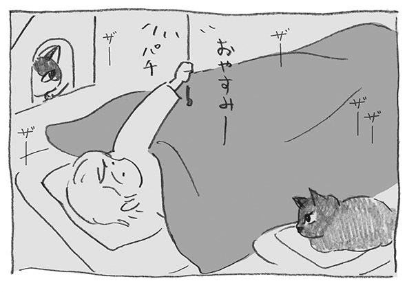 2-0417おやすみ